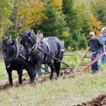 Aubrey and Ross Farm Canadians teach plowing
