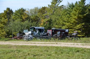Sterlings collection of horse drawn vehicles on display